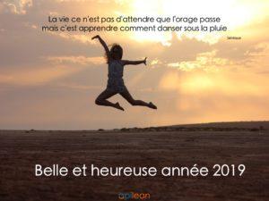 Belle et heureuse année 2019